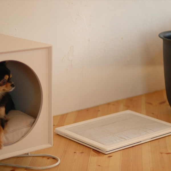 犬のトイレ only one