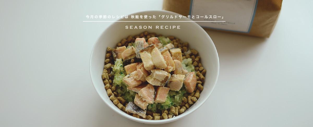 今月の季節のレシピは 秋鮭を使った「グリルサーモンとコールスロー」