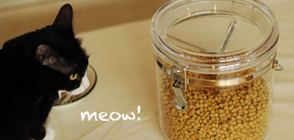 特集 :キャットフードに栄養プラス!かんたん・おいしい猫ごはん