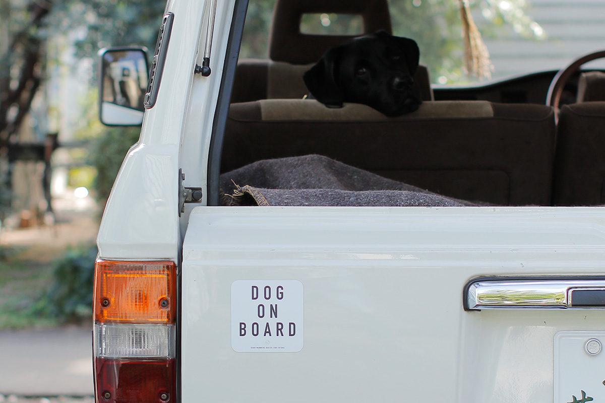 DOG&CATステッカーができました!