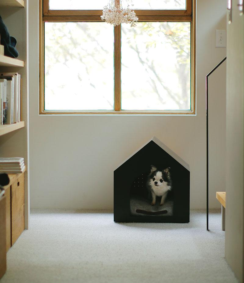 新しい犬小屋とクッションができました