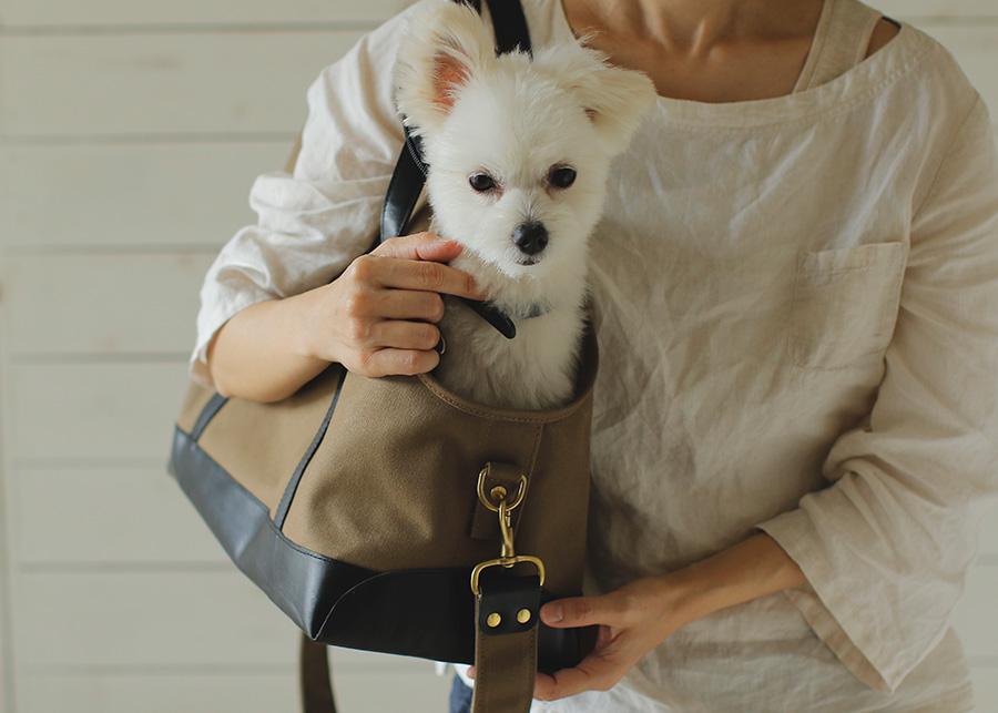 犬のキャリーバッグ