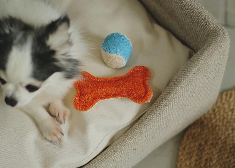 犬のおもちゃ へちまのおもちゃ -loofah dental dog toy-