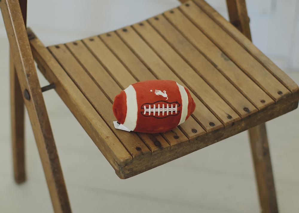 犬のおもちゃ フットボール
