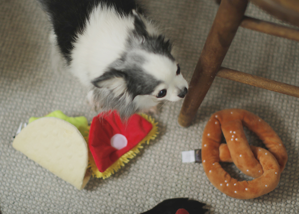 犬のおもちゃ タコス