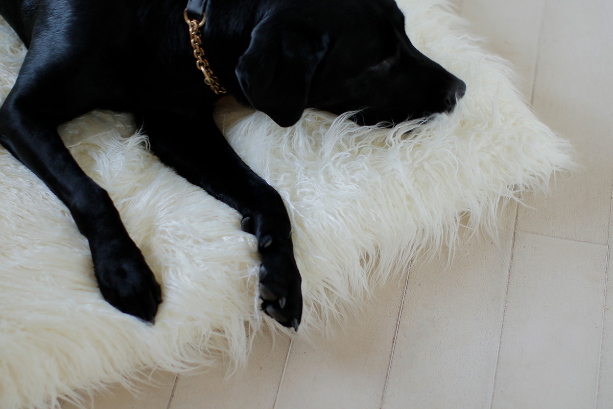 Nap Mat Mongolian Fur (Ivory)