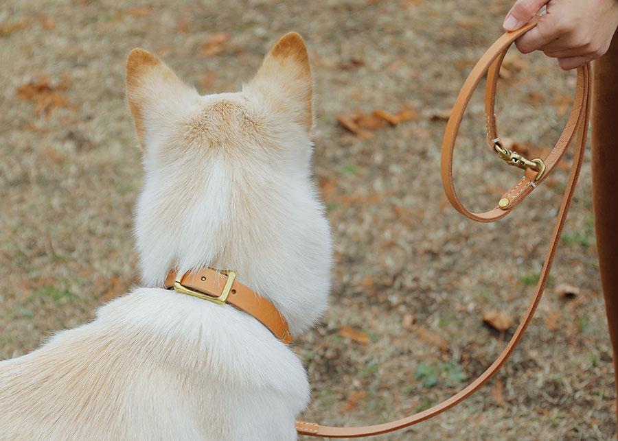 犬の首輪 | ハーフチェーンカラー | HALF CHAIN COLLAR - we original -