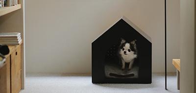 犬小屋 HOME